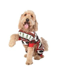 Dog ''Bear Essentials'' Costume